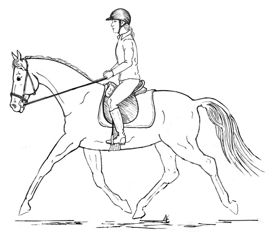 Posture In Riders